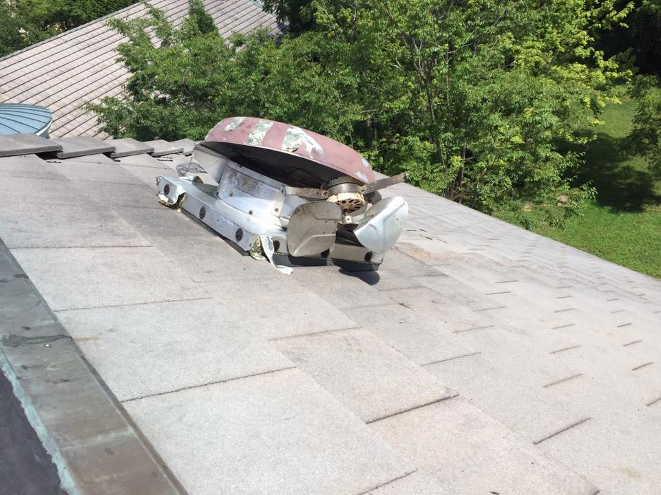 "<span class=""my_h4"">Raccoon Damage On Roof</span>"