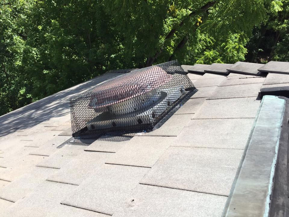 "<span class=""my_h4"">Repaired Raccoon Damage On Roof</span>"